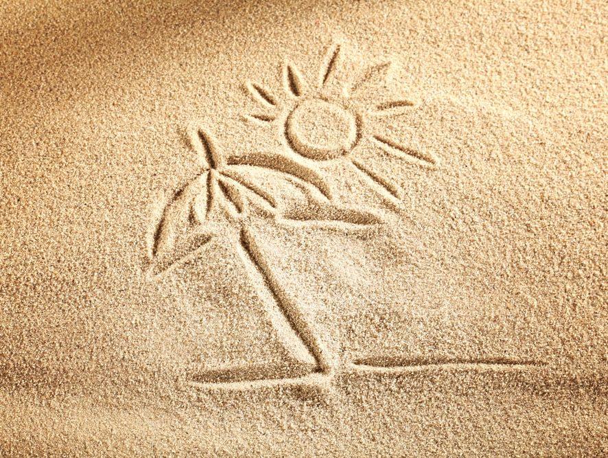 🌞 Der spürbare Sommer 🌴